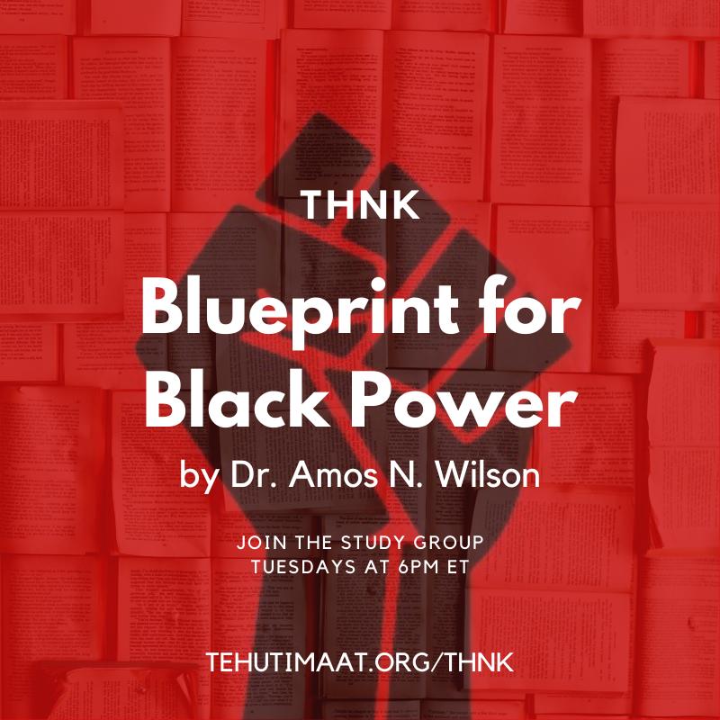 "THNK ""Blueprint for Black Power"""